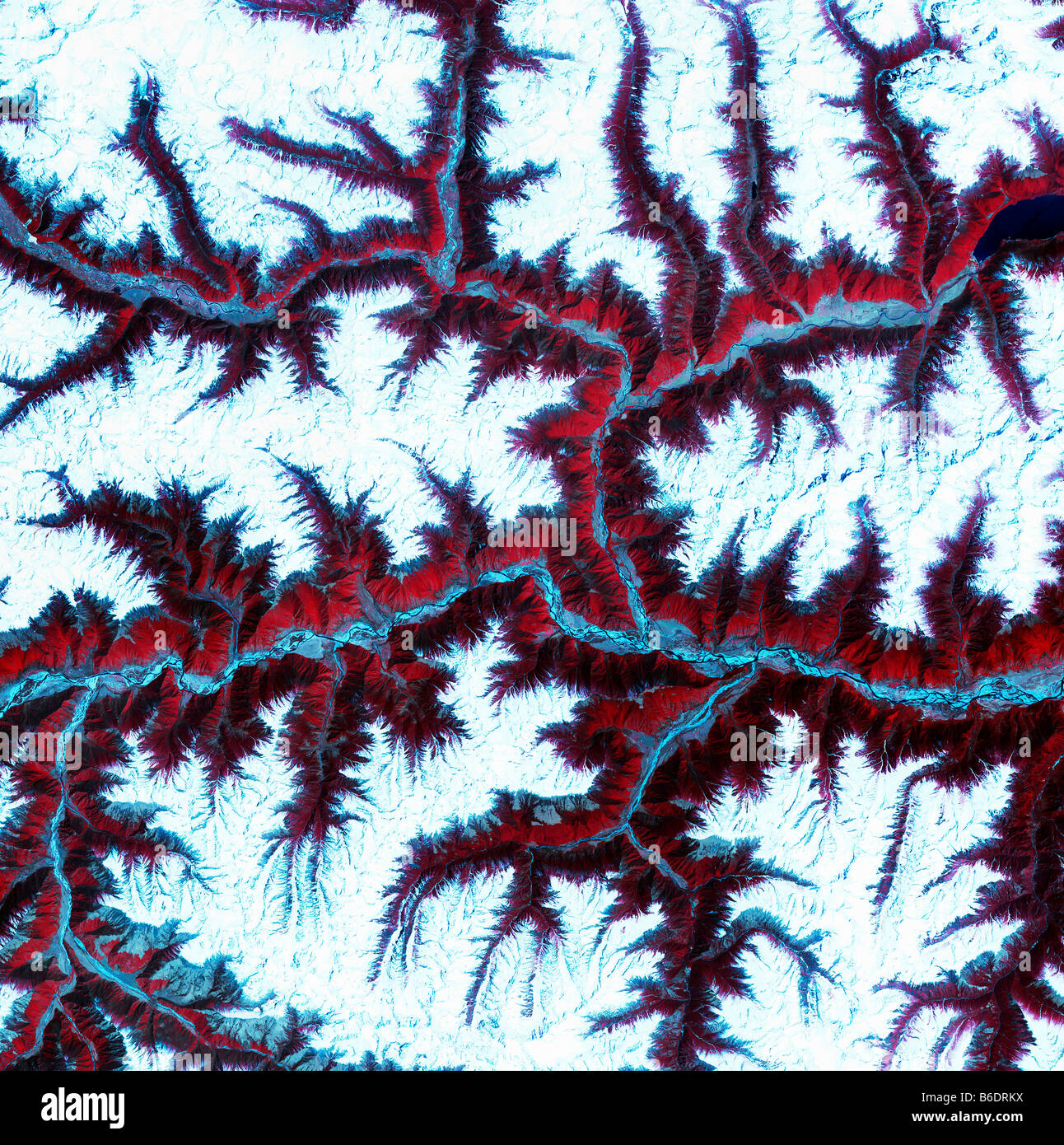 Eastern Himalayas, satellite image. North is at top. Snow is white, vegetation is red, barrenareas are light blue. Stock Photo