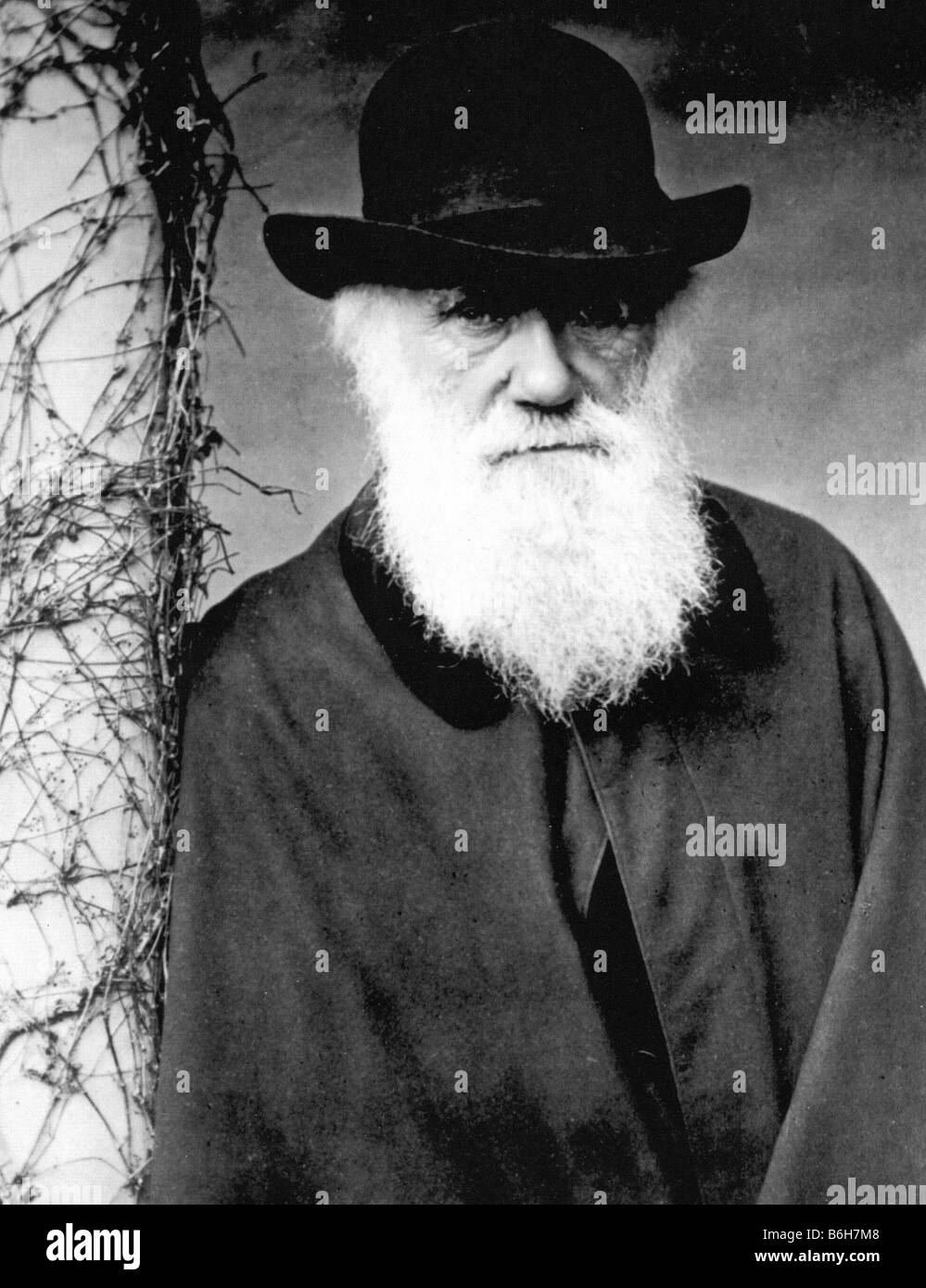 CHARLES DARWIN aged 72 photographed by Julia Margaret Cameron in 1881 Stock Photo