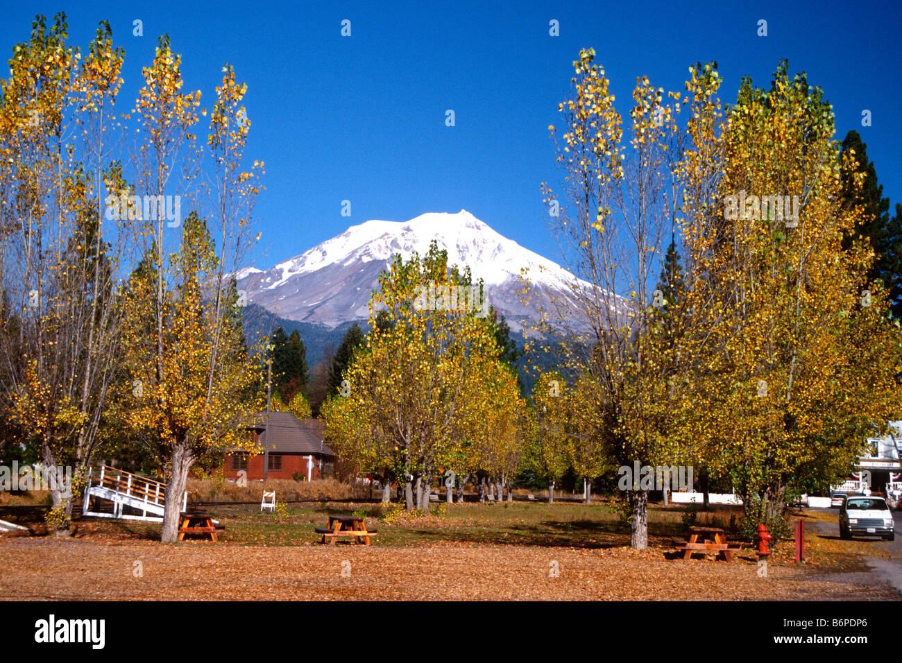 mount-shasta-seen-through-autumn-leaves-at-mccloud-california-B6PDP6.jpg