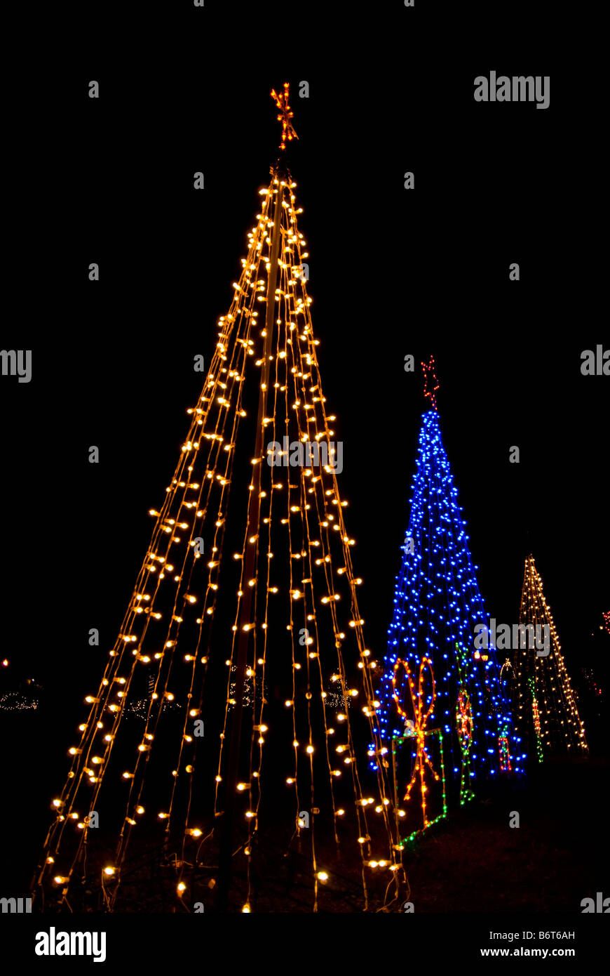 Three christmas trees bright colors two white lights one