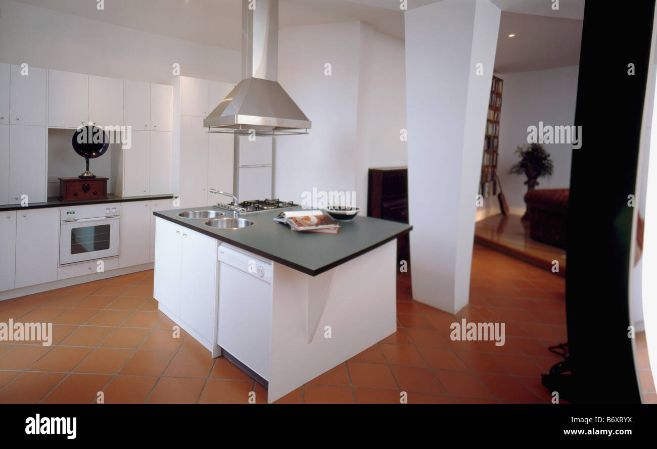 Stainless steel extractor above white island unit with