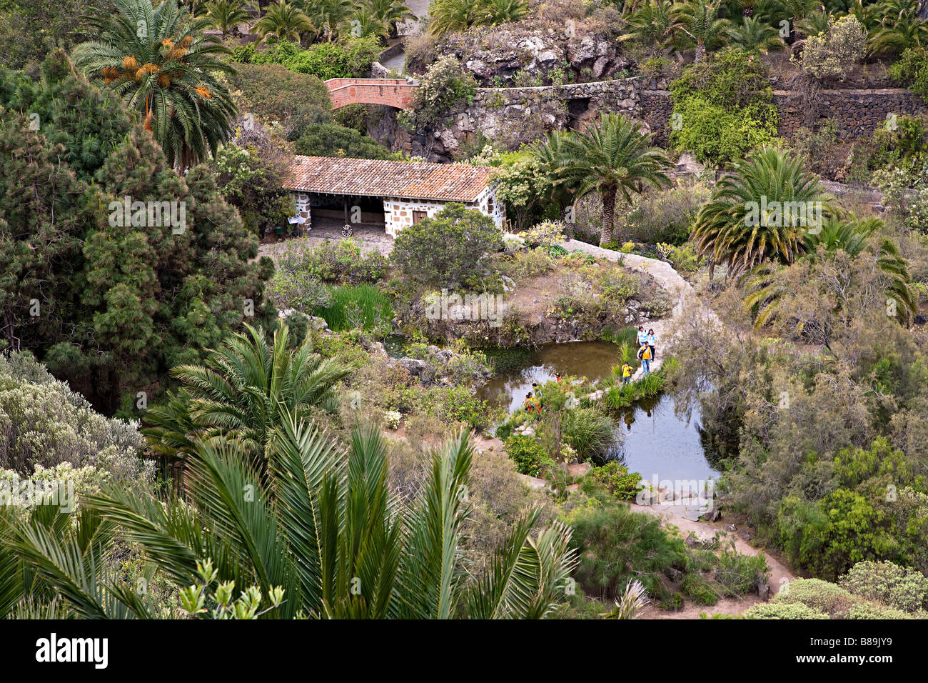People walking on paths through the jardin canario for Jardin canario horario