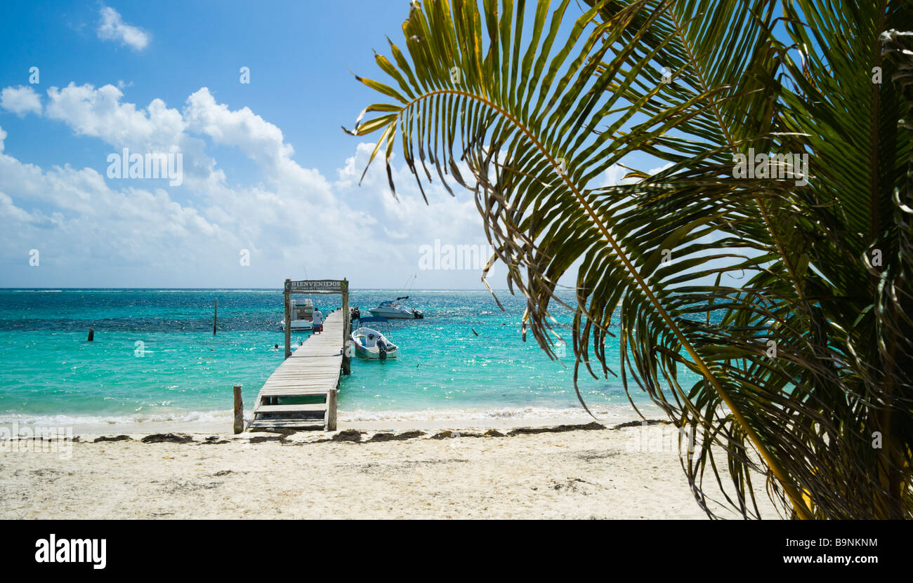 Mexico yucatan fishing village and small quiet resort of for Puerto morelos fishing