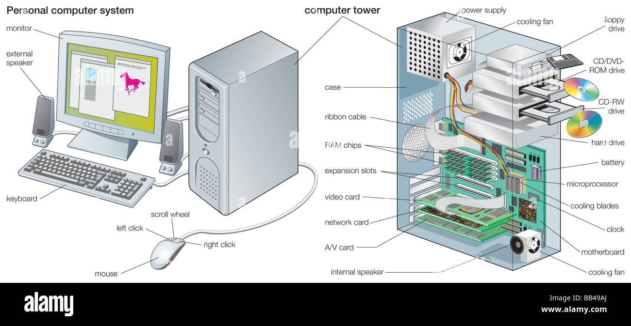 the applications of the computer that control the hardware are