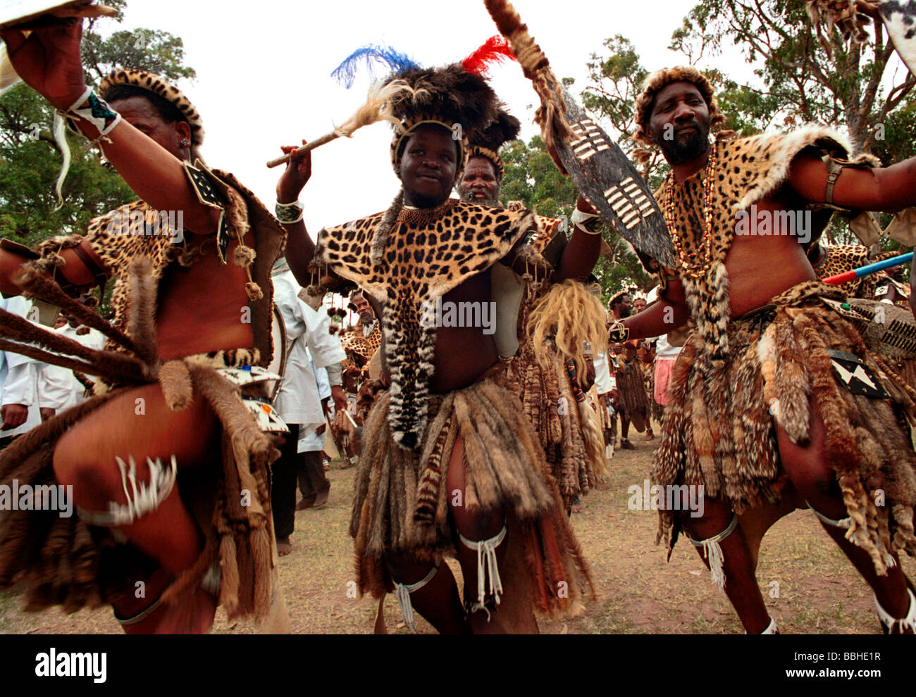 zulu people The entire wikipedia with video and photo galleries for each article find something interesting to watch in seconds.