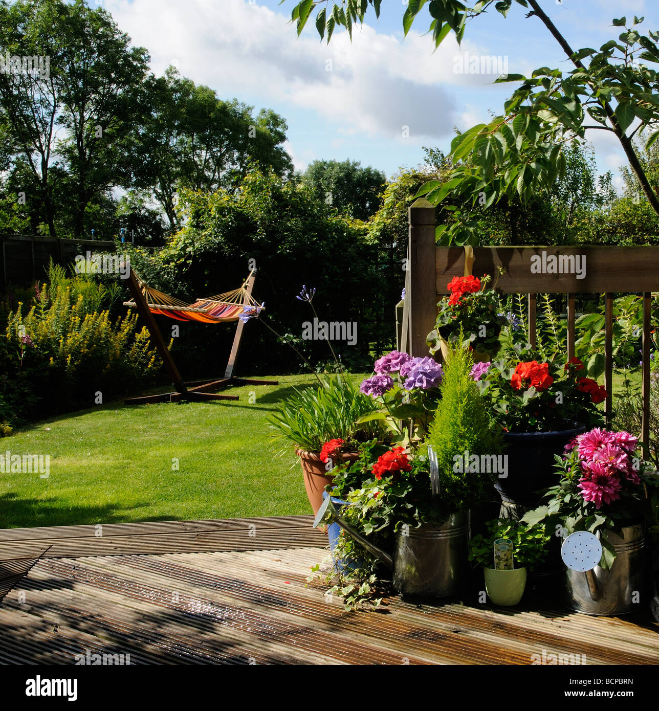 Suburban English Country Garden Colourful Plants And