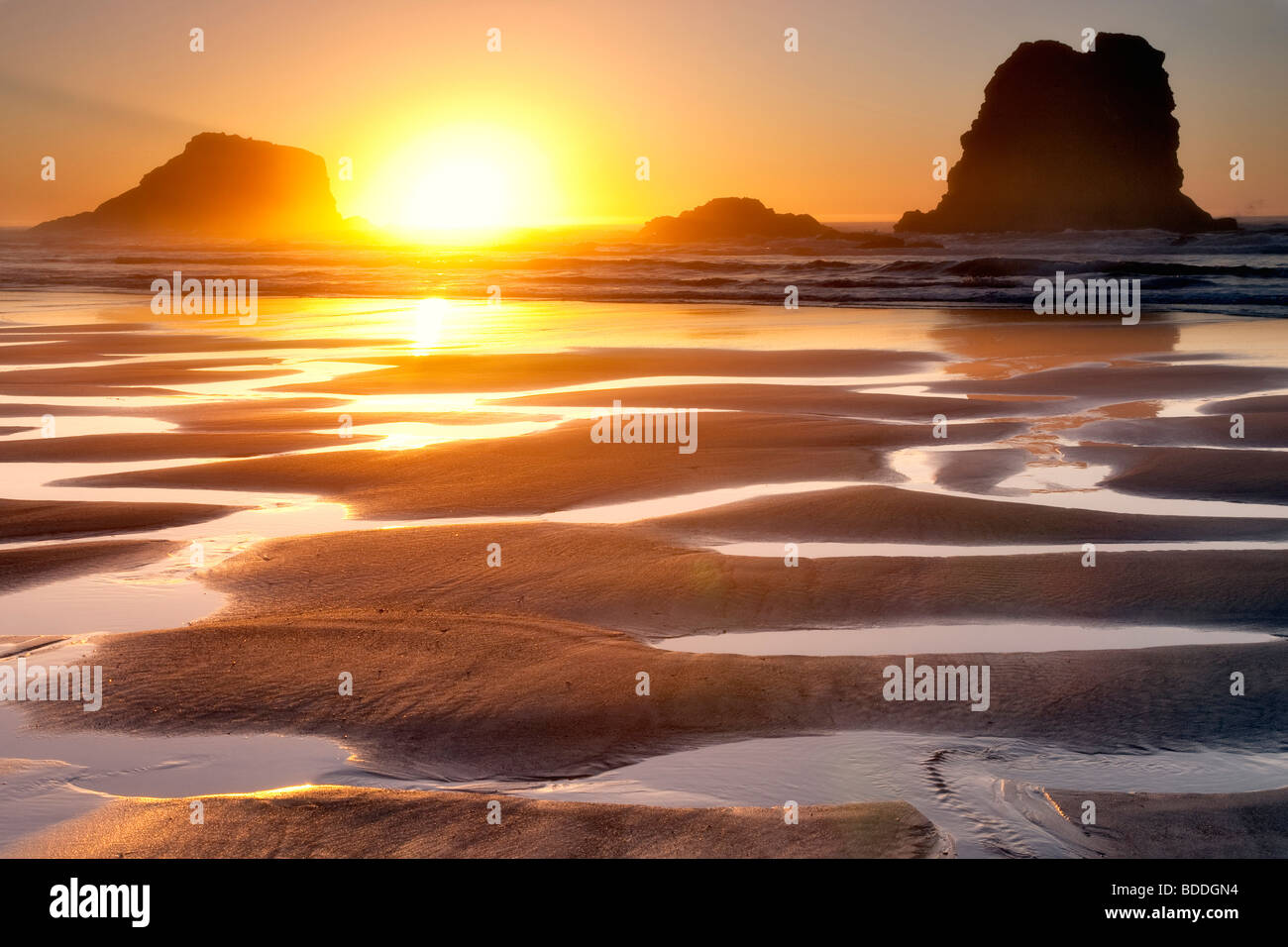 Sunset with low tide reflecting pools.Samuel H. Boardman State Scenic Corridor. Oregon Stock Foto