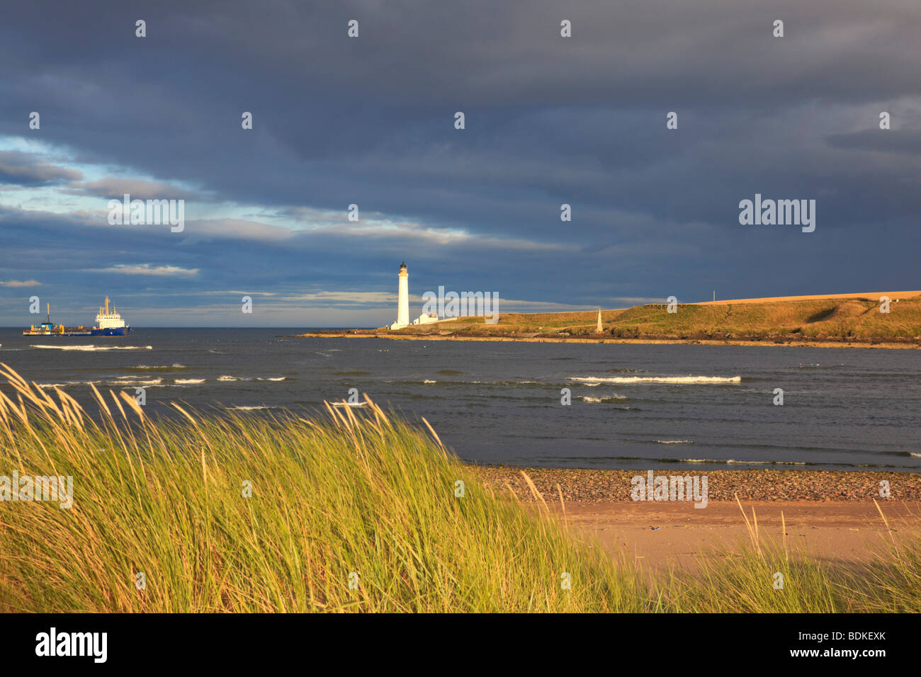 scurdie-ness-lighthouse-montrose-BDKEXK.