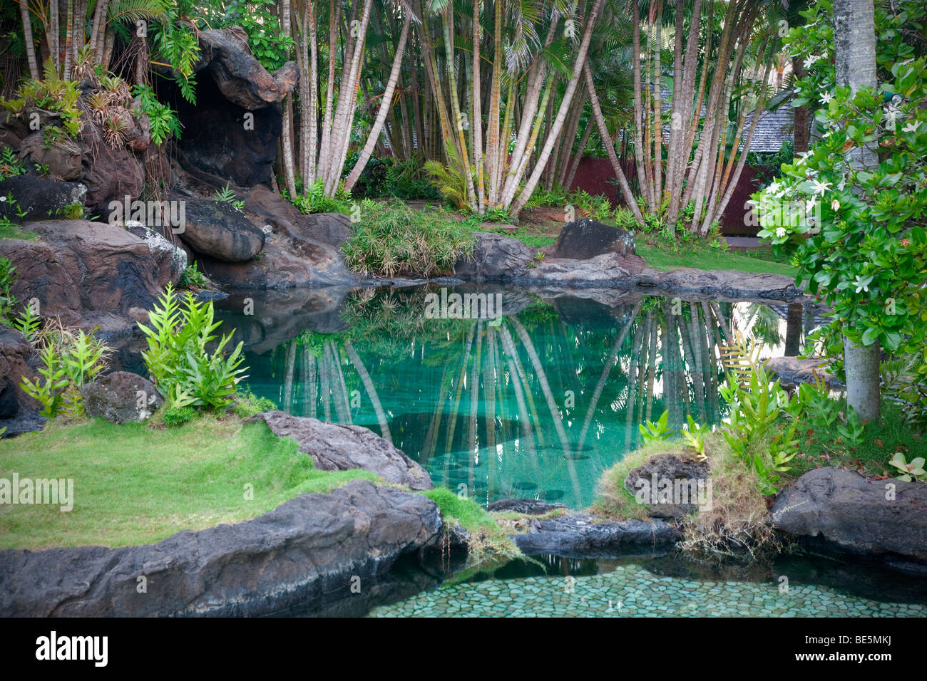 Pond And Garden At Na Aina Kai Botanical Gardens Kauai Hawaii Stock Photo Royalty Free Image