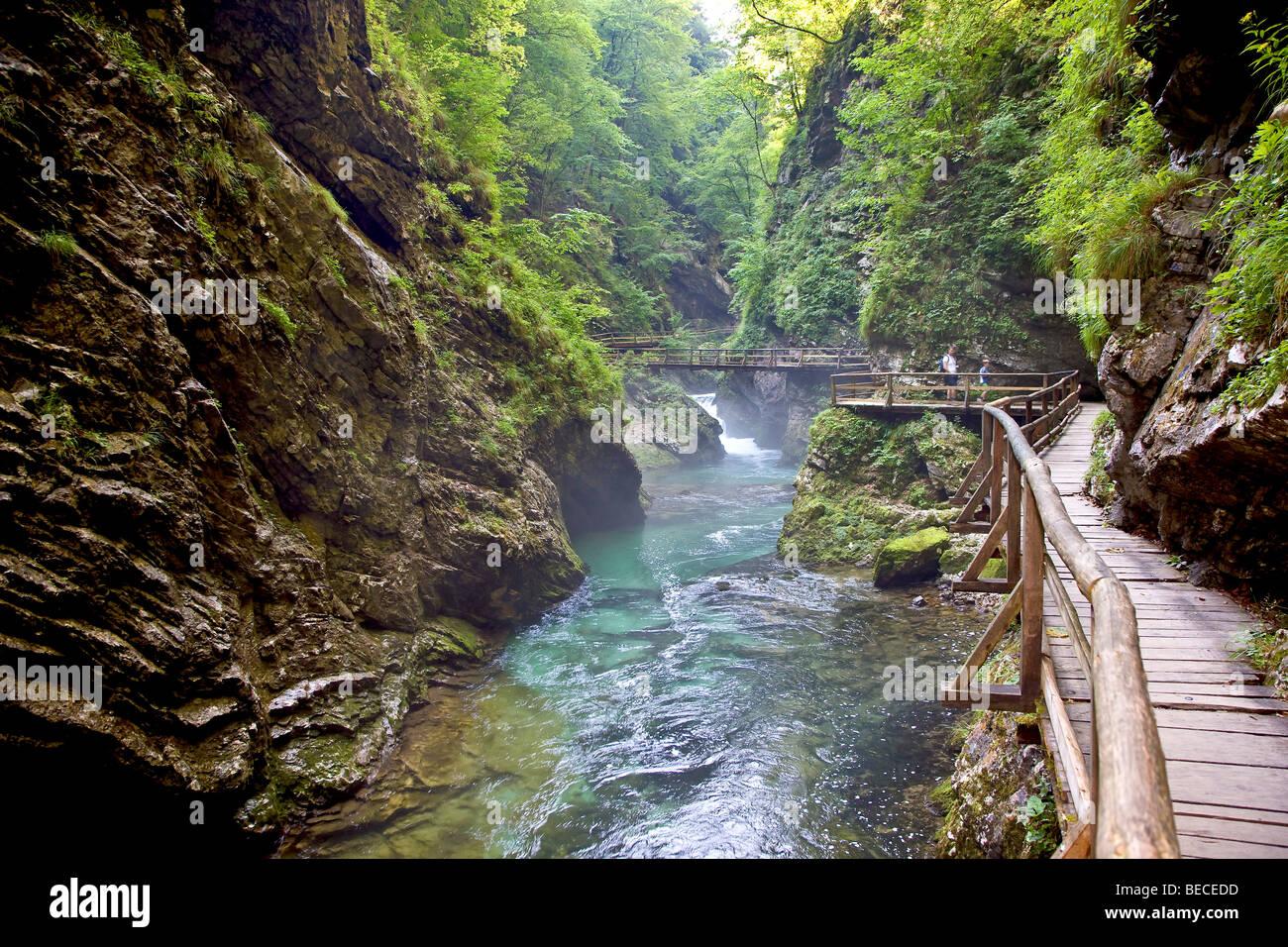 Slovenia Lake Vintgar Gorge Triglav National Park Near The Town Bled In