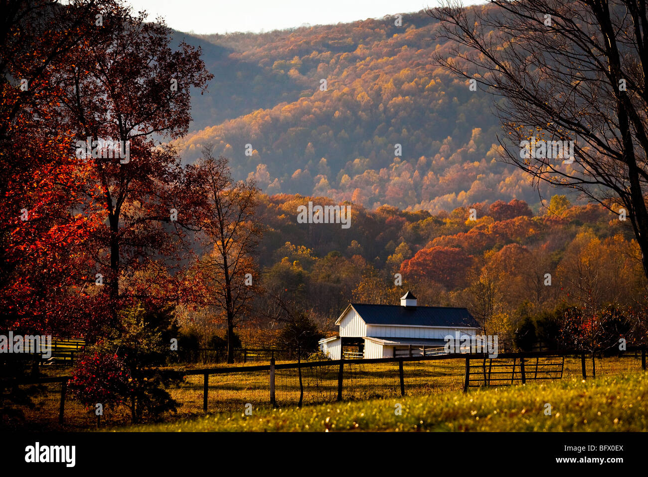 Autumn foliage around a farm in the shenandoah valley Usa countryside pictures