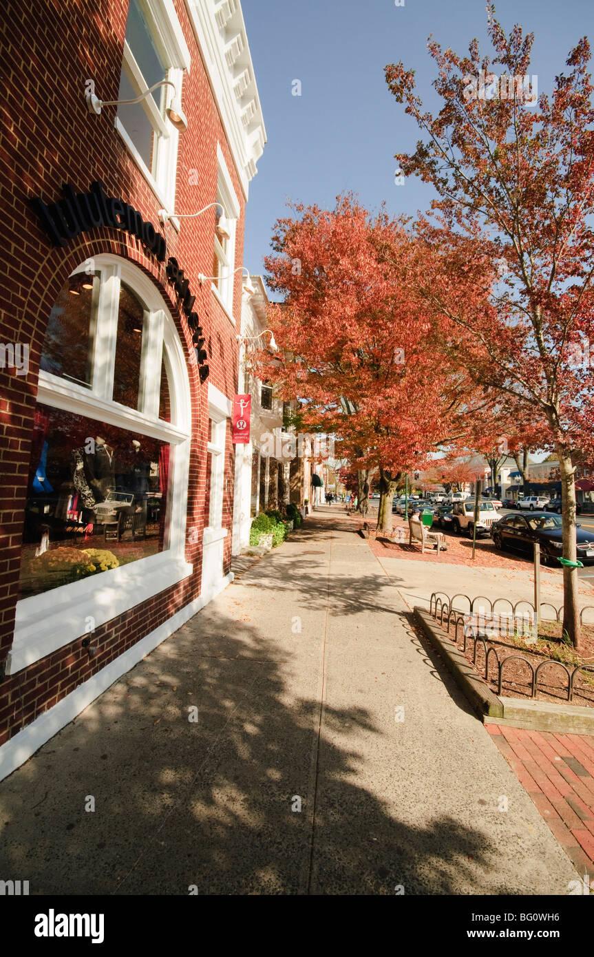 Main street east hampton the hamptons long island new for Hamptons long island