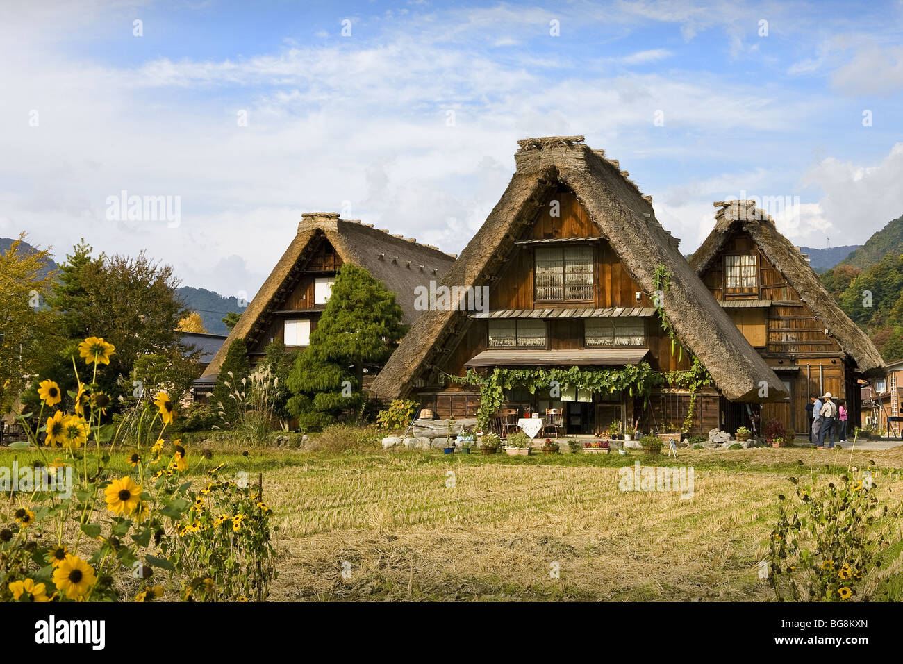 Traditional Japanese Houses Built In The Style Called