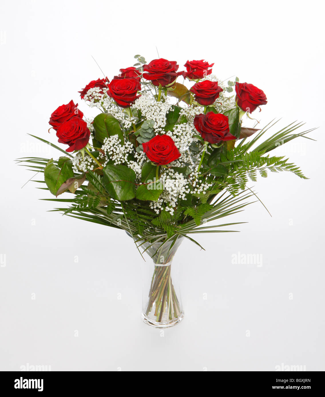 A dozen red roses for valentines day flowers on a white for Buying roses on valentines day