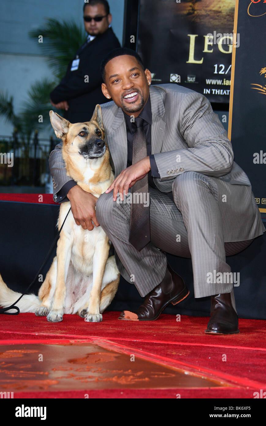 I Am Legend Puppy WILL SMITH & DOG F...