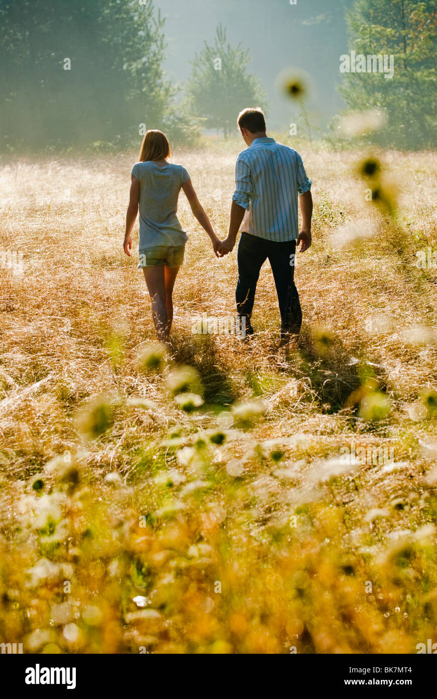 Young couple walking through field holding hands Stock Foto