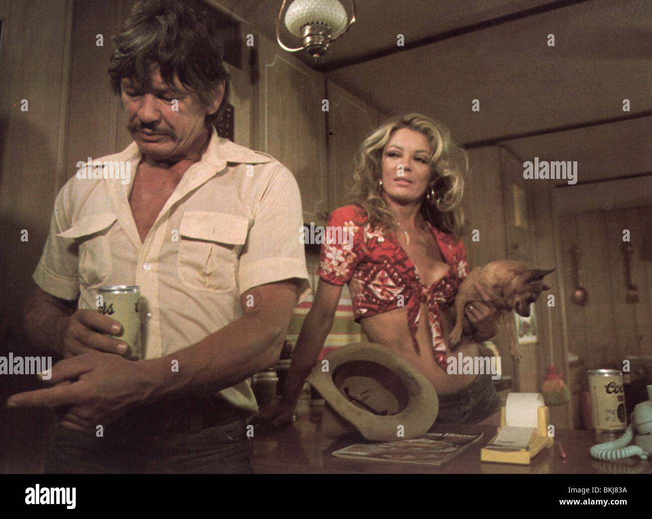 breakout 1975 charles bronson sheree north brko 005foh