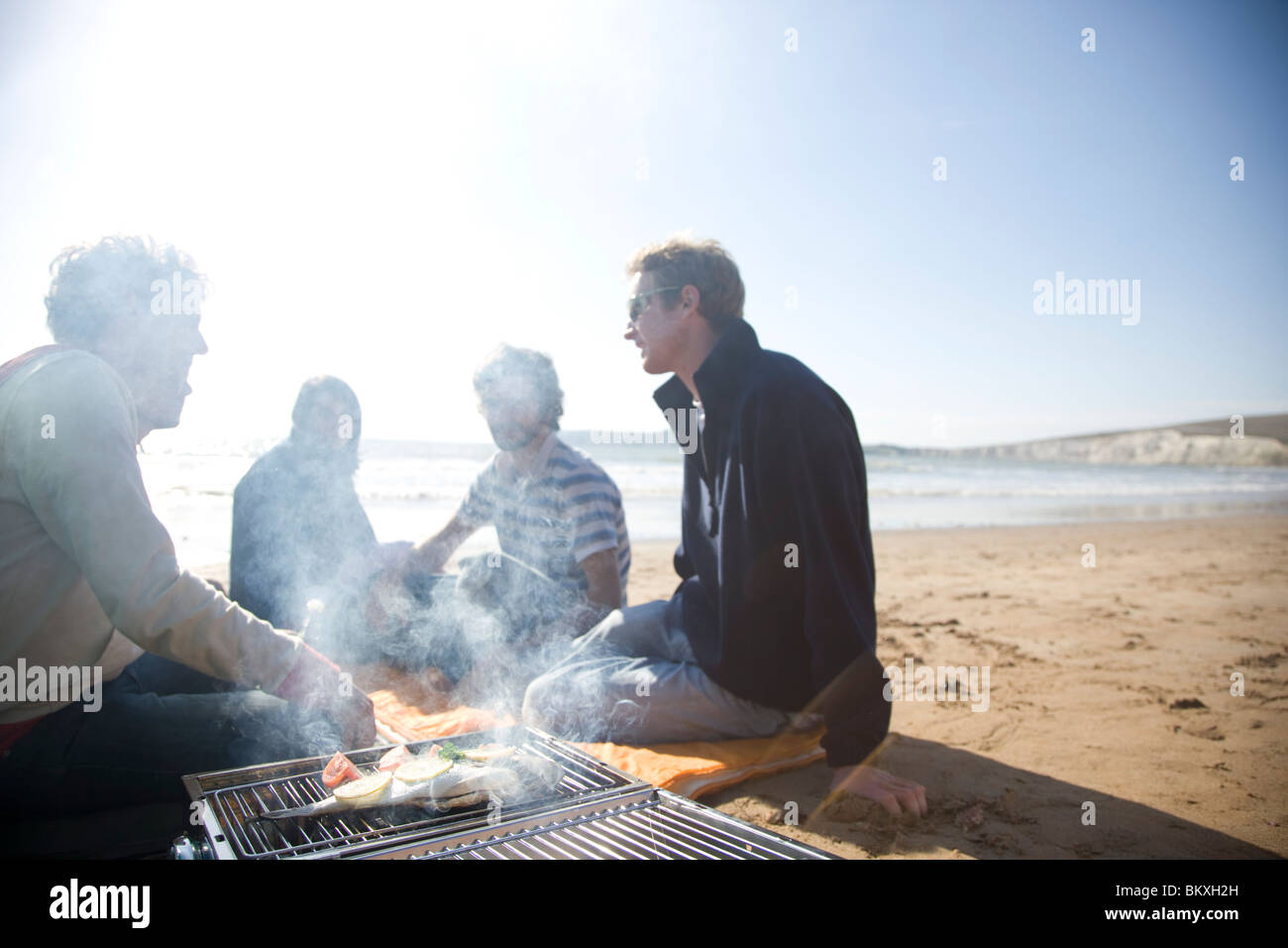 Group of friends sitting around a barbeque on the beach Stock Foto