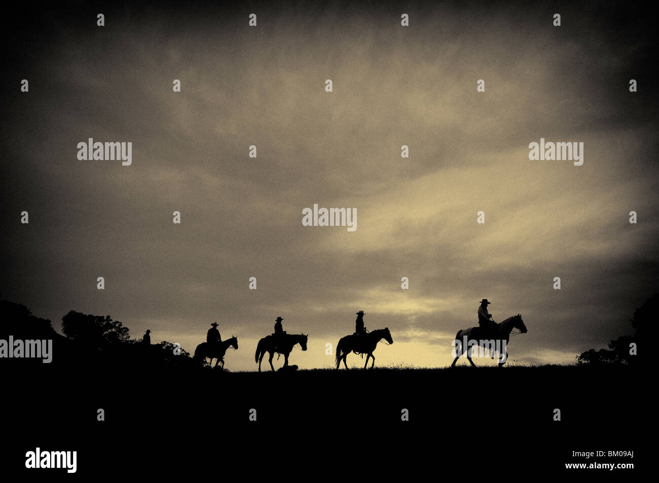Horses and cowboys on their way home at sunset Stock Photo