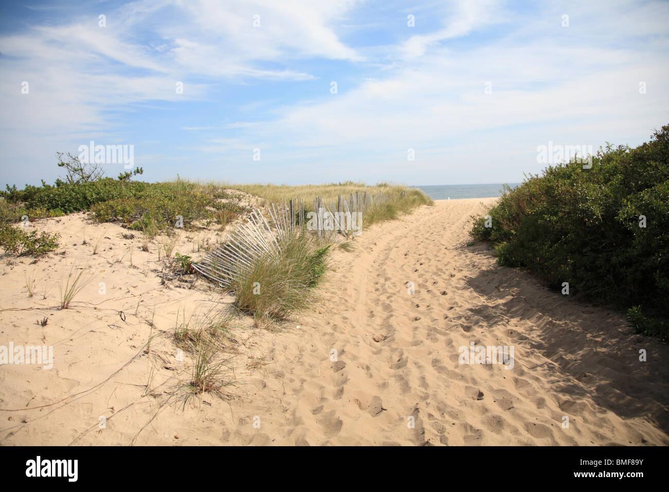 Hampton Beach Long Island New York