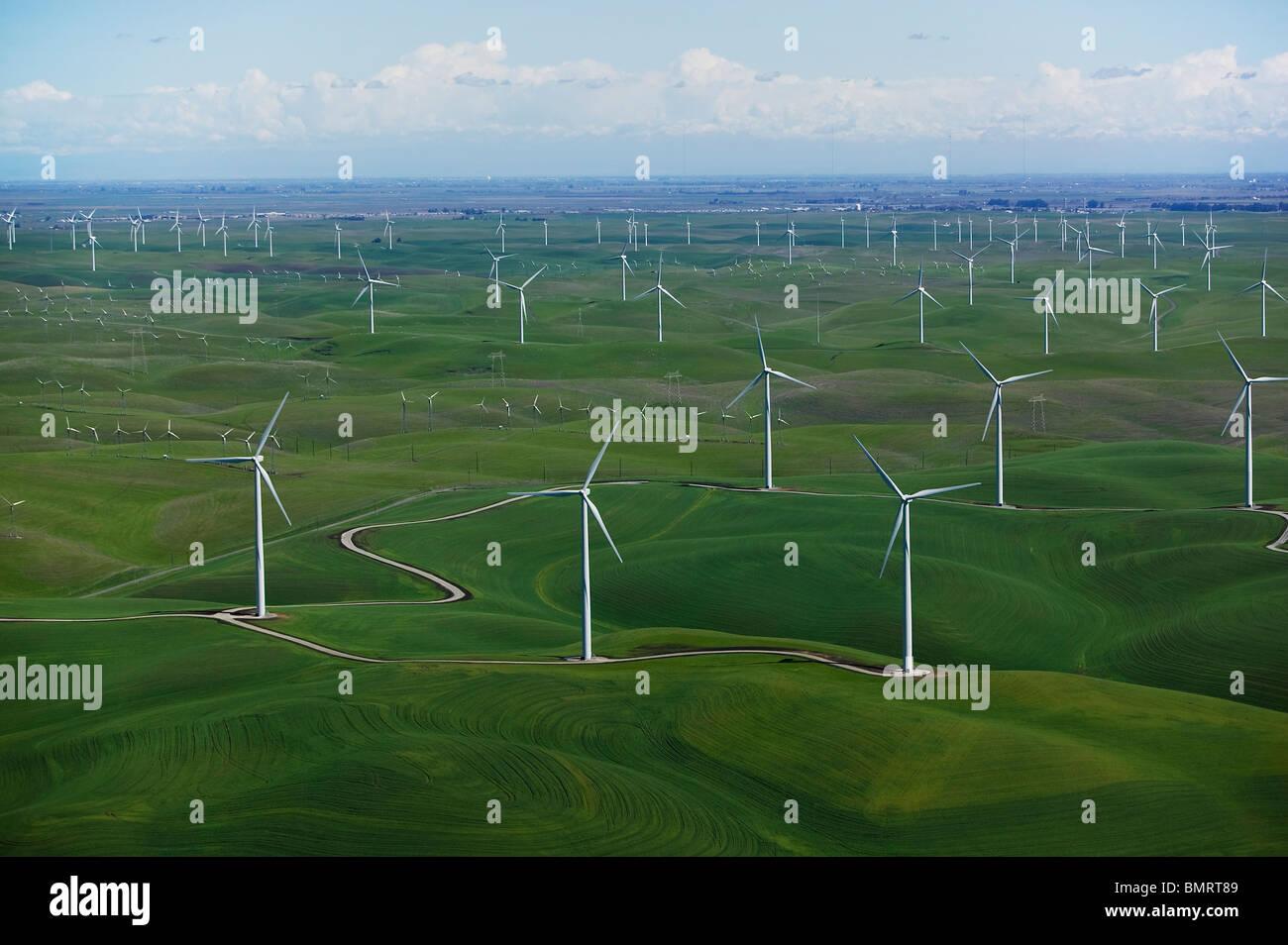 aerial photograph Shiloh Wind Power Plant Montezuma Hills Solano County California Stock Photo