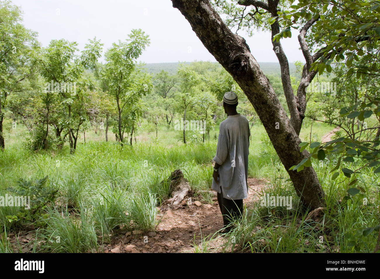 Hunter Moussa at the edge of the Nyankamba Escarpment, reached from Sor 2, Ghana. Stock Photo