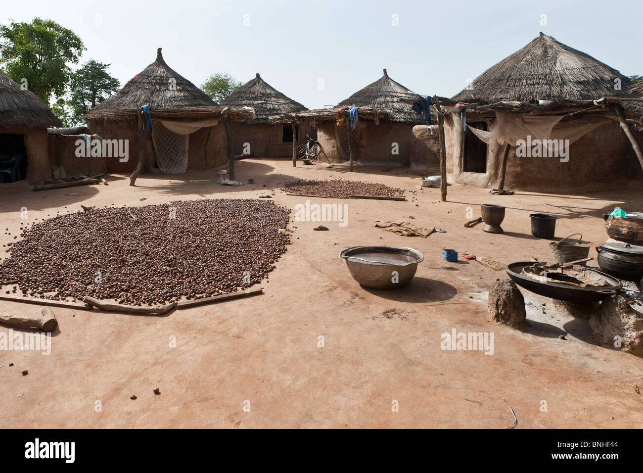 Bemobah household at the village of Sor No. 1, Gonja triangle, Damango district, Ghana. Shea nuts are frying in Stock Photo