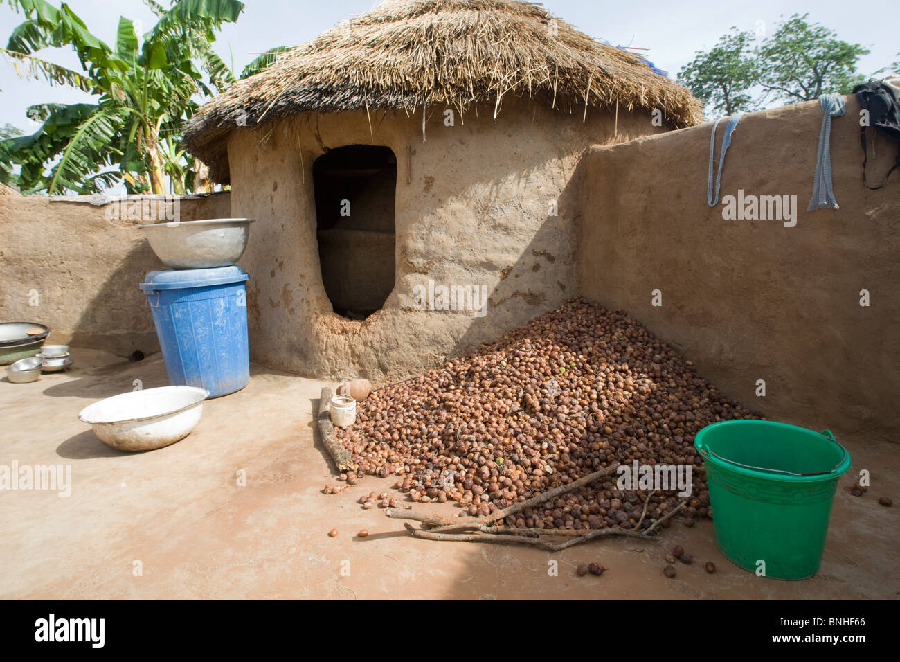 Shea nuts at a Mamprusi household in the village of Sor No. 1, Gonja triangle, Damango district, Ghana. Stock Photo