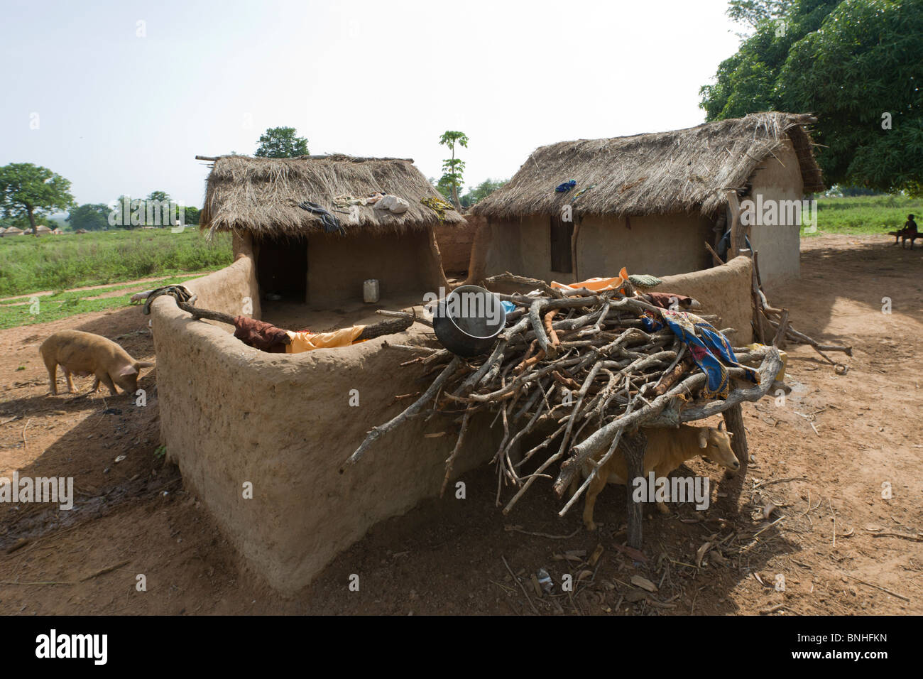 Dagarti household in the village of Sor No. 1, Gonja triangle, Damango district, Ghana. Stock Photo