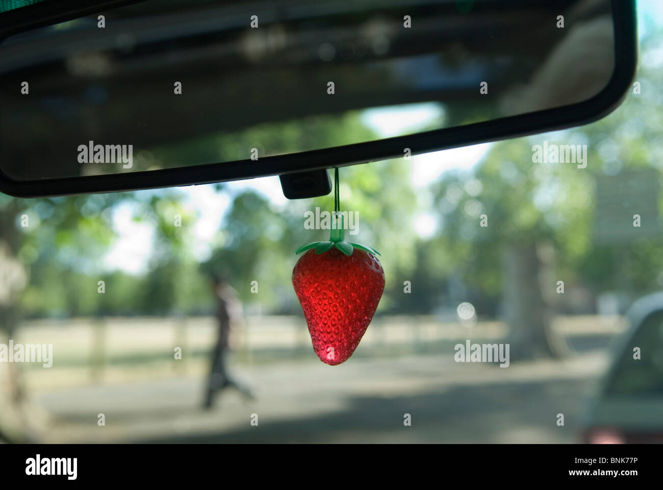 car air freshener hanging from internal rear view wing mirror homer stock photo royalty free. Black Bedroom Furniture Sets. Home Design Ideas