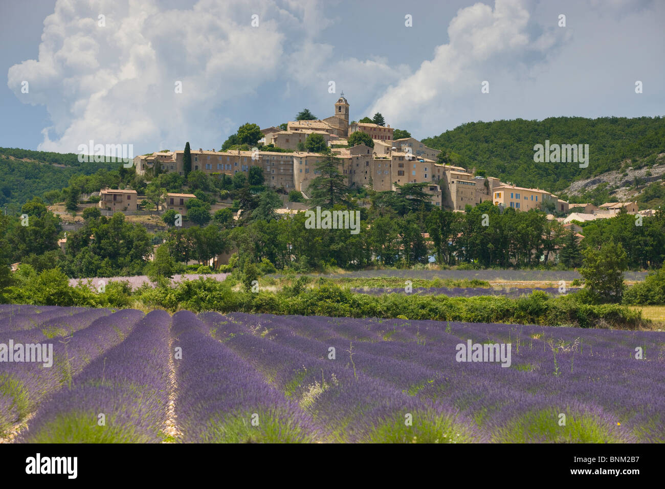 Banon france provence alpes de haute provence town city for Haute provence