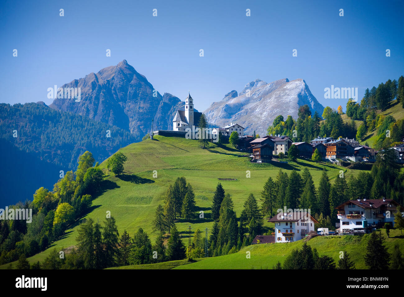 Italy Alps Veneto Dolomites Cadore hill wood forest meadows holidays travel, Stock Foto