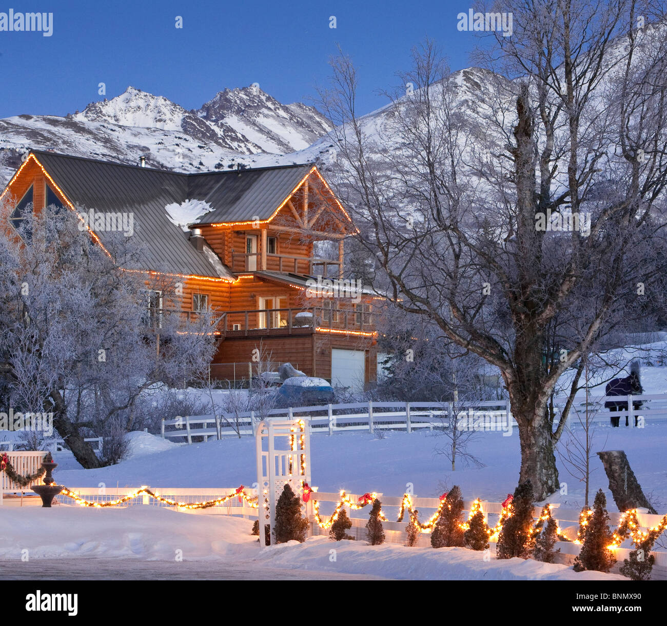 rural forest home decorated with christmas lights at dusk with stock