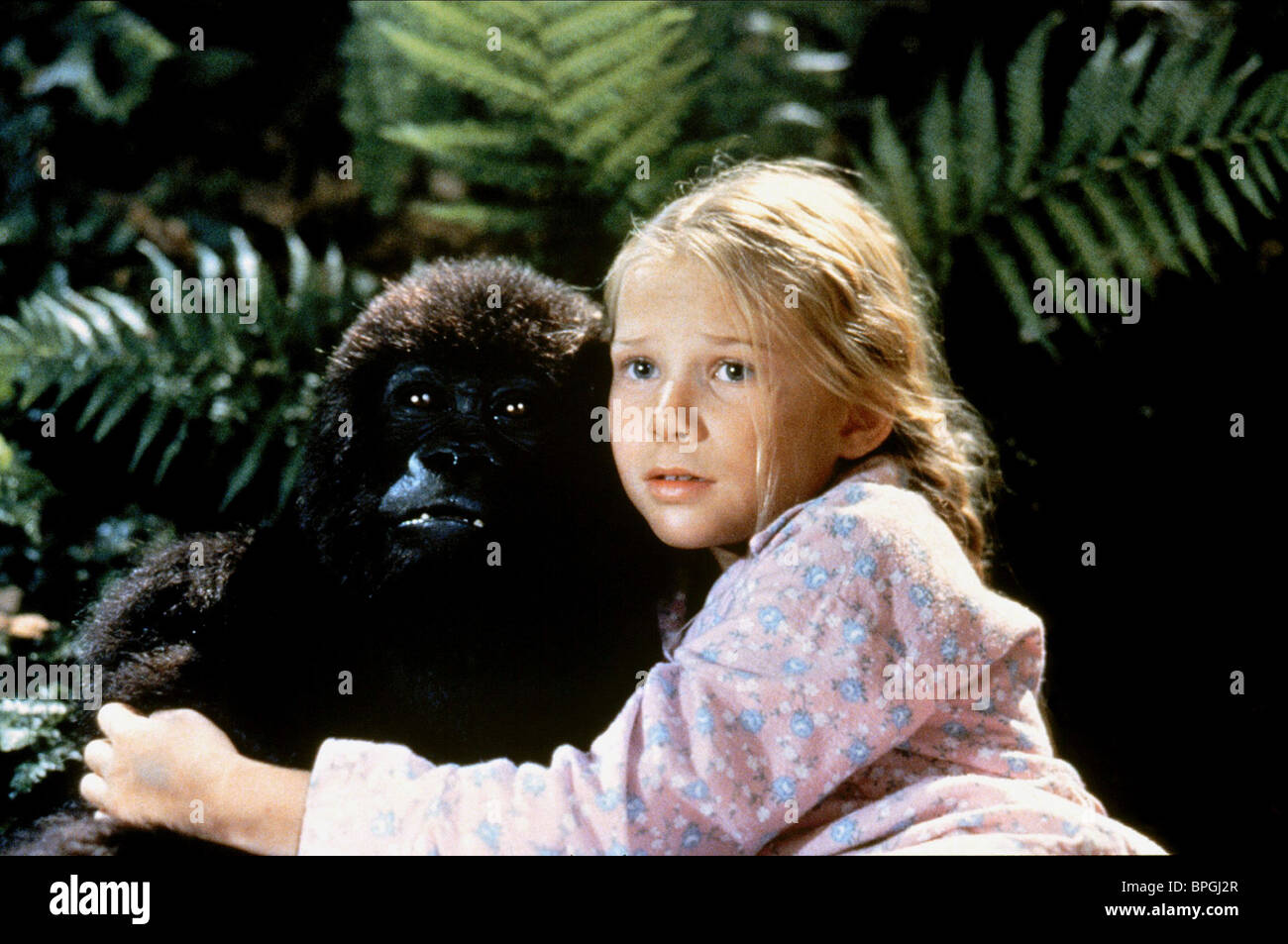 gorilla amp mika boorem mighty joe young 1998 stock photo