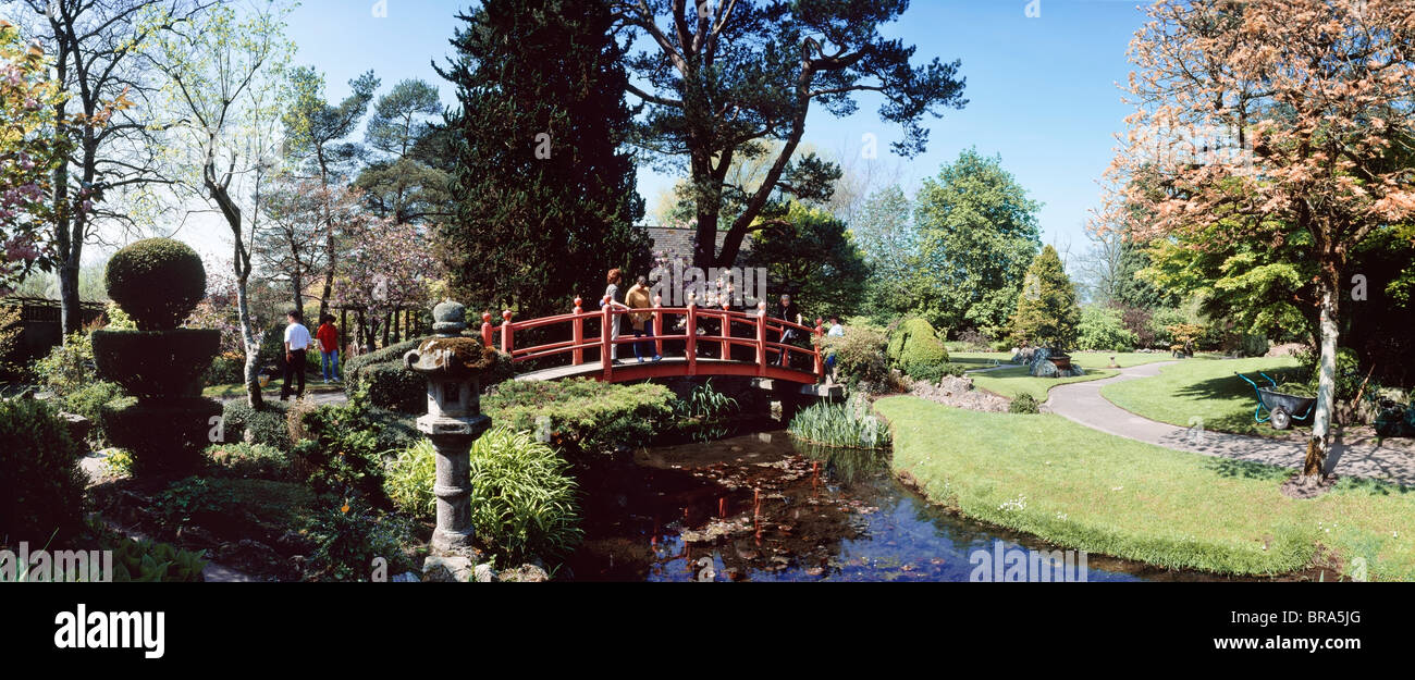 Tully japanese gardens tully co kildare ireland people for Garden design kildare