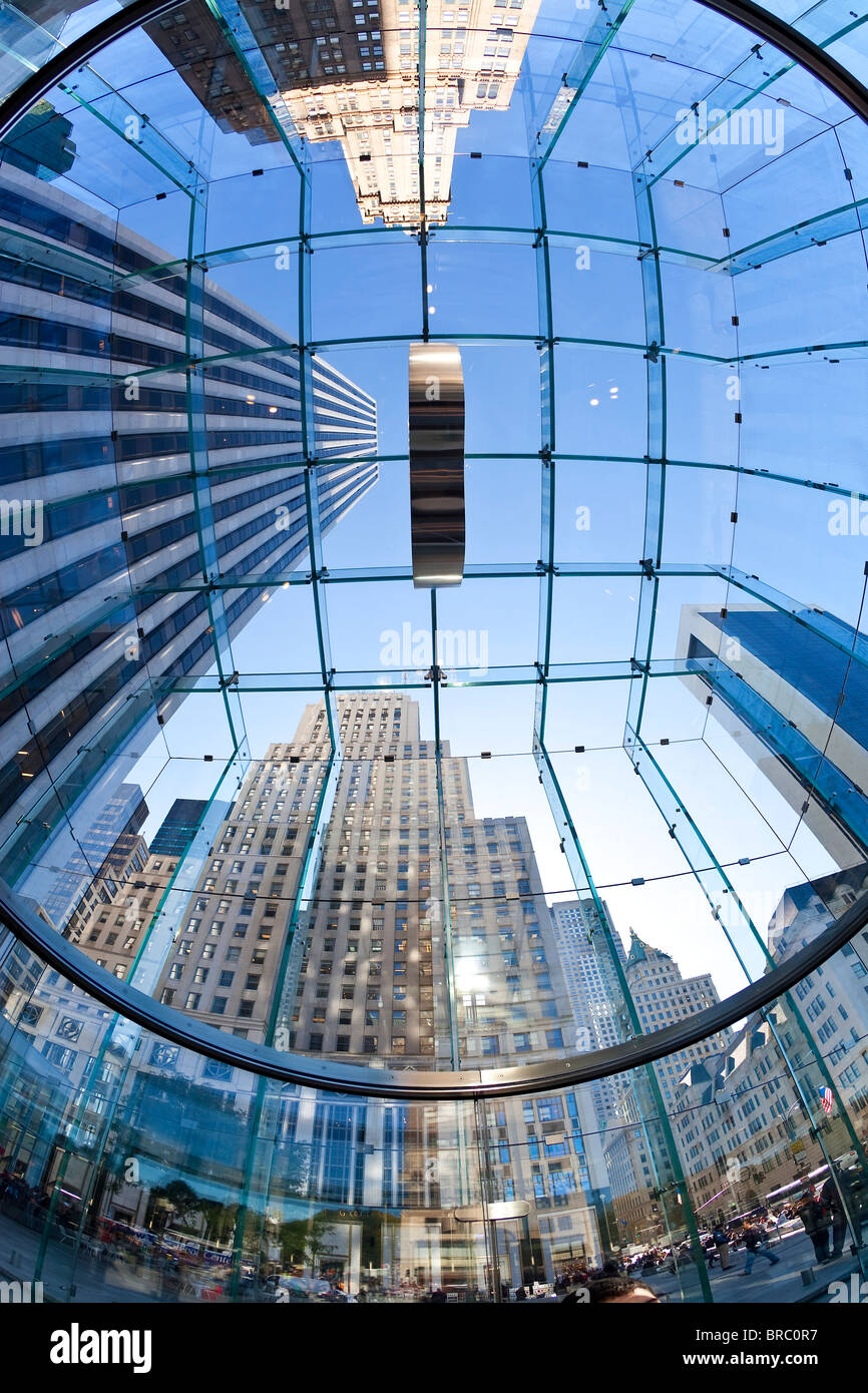Skyscrapers of Fifth Avenue viewed from below through a glass roofed ceiling, Manhattan, New York City, New York, Stock Photo