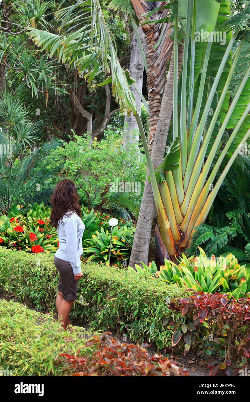 Canary islands tenerife puerto de la cruz jardin for Botanico jardin