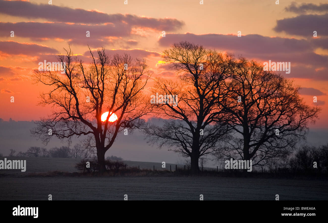 Winter sun rises from misty Rother valley over wooded hills in red sky with purple gilded clouds near Sandhurst Stock Foto