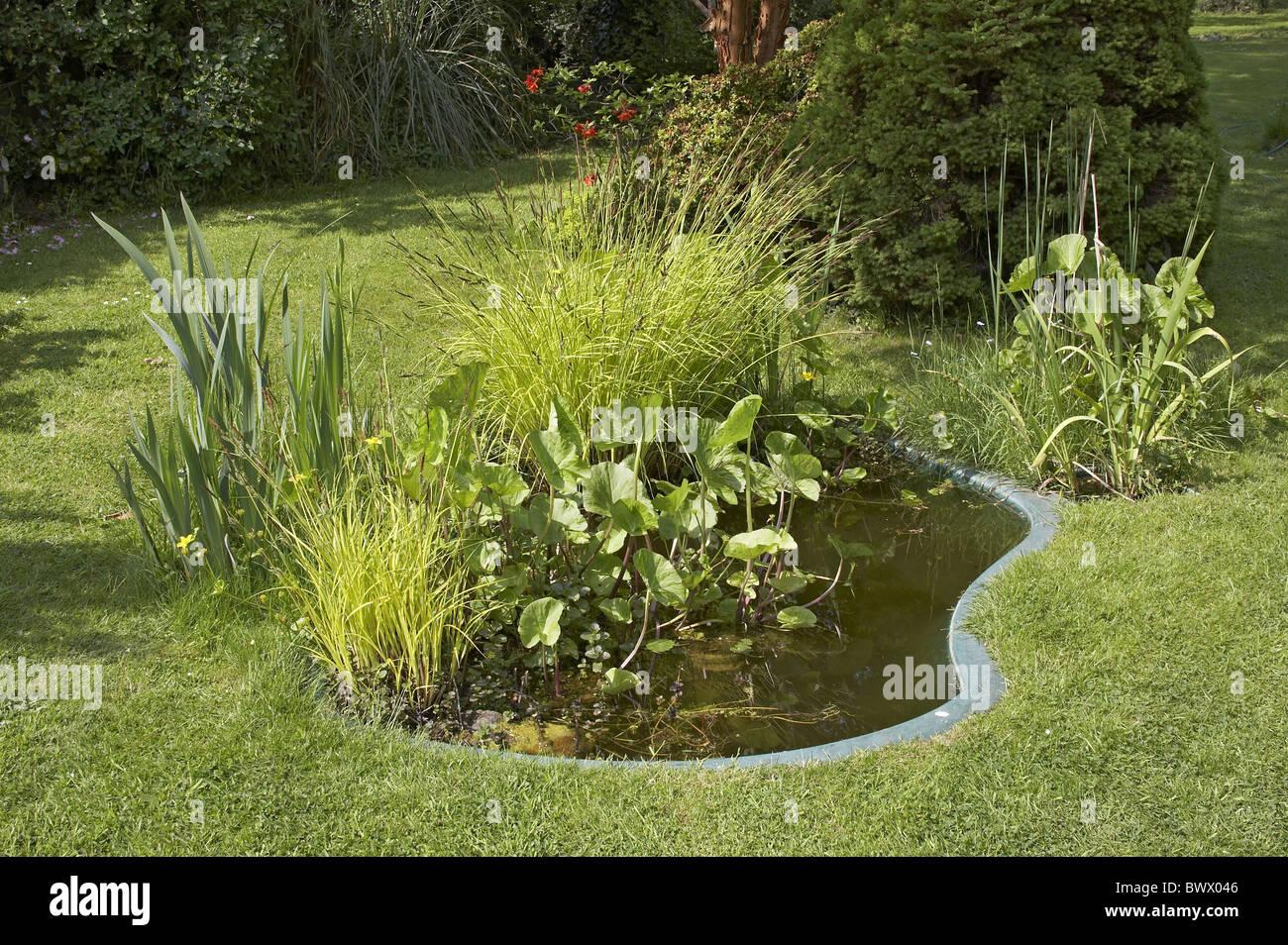 Garden wildlife pond preformed fibreglass pond stock photo for Preformed pond