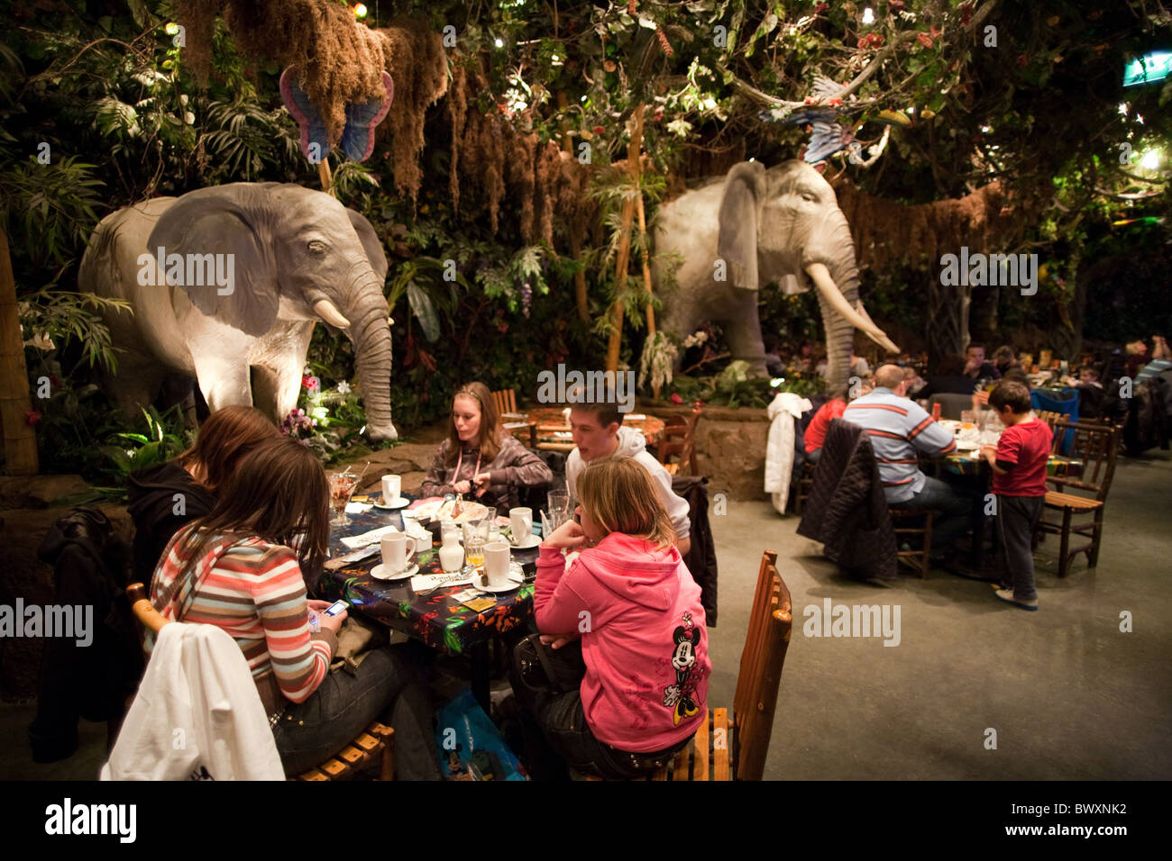 Menu At Rainforest Cafe Disneyland Paris