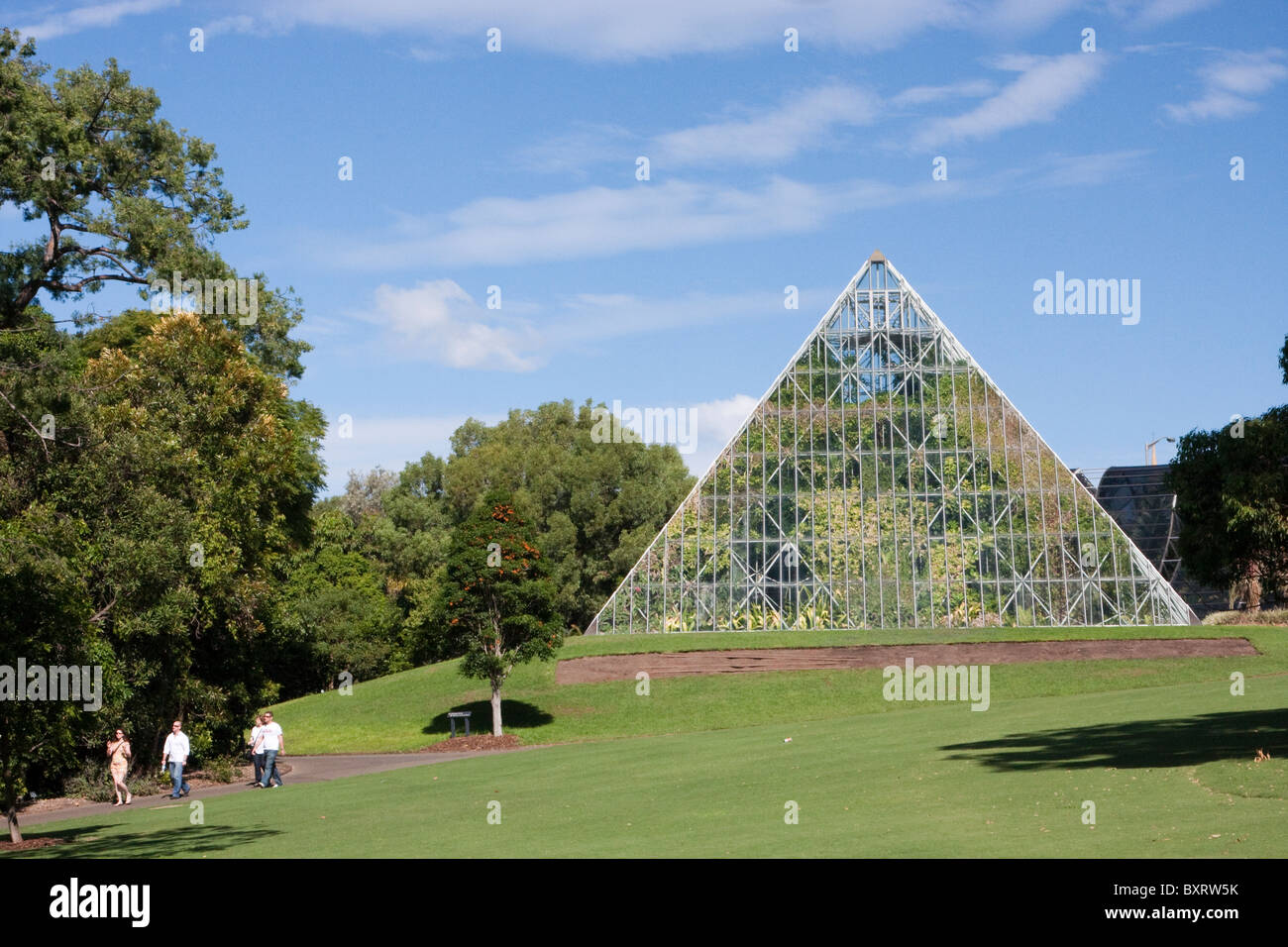 Australia new south wales sydney royal botanic gardens for Landscape gardeners sydney