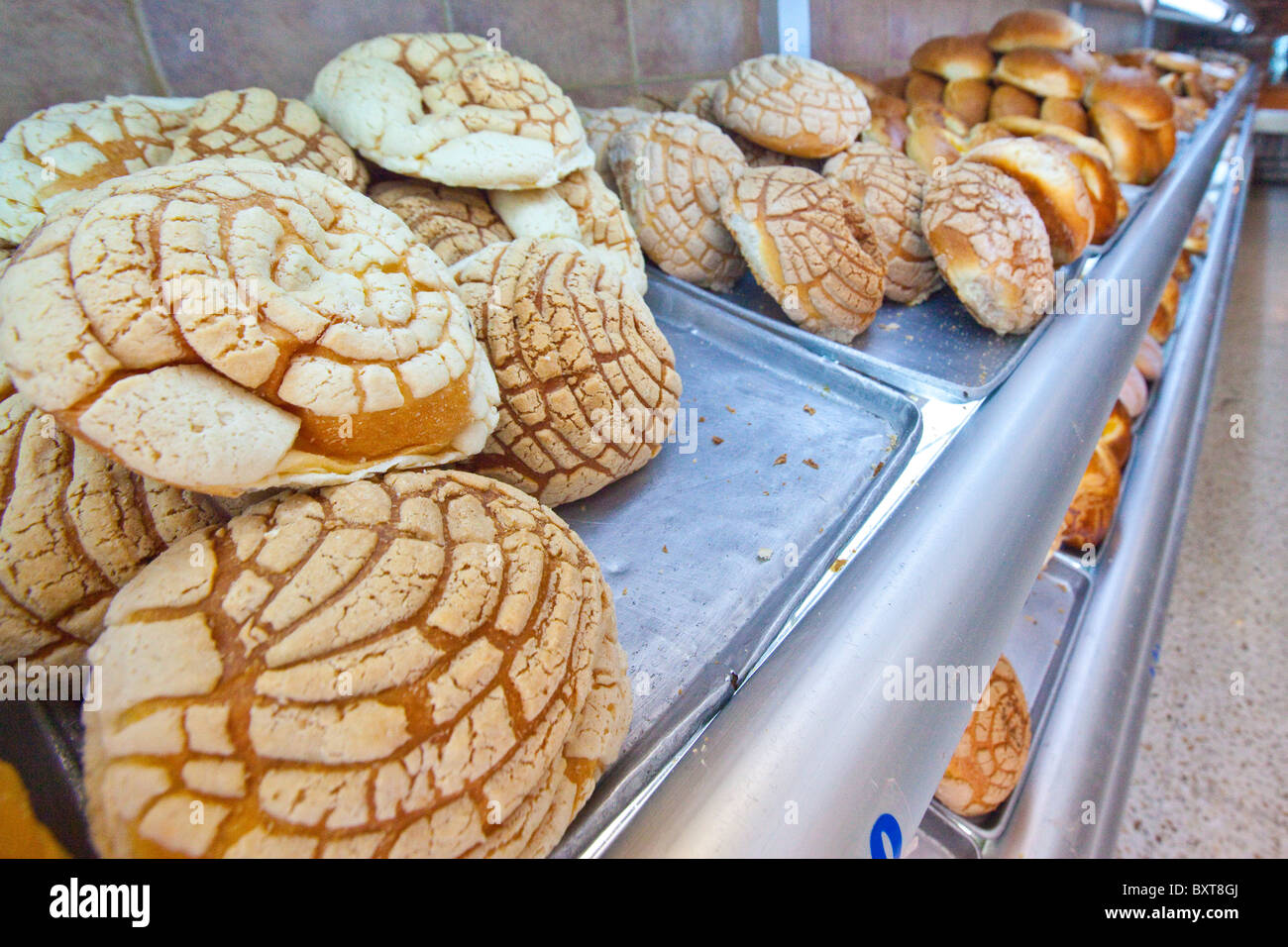 Conchas Or Mexican Sweet Bread In A Bakery In Coyoacan