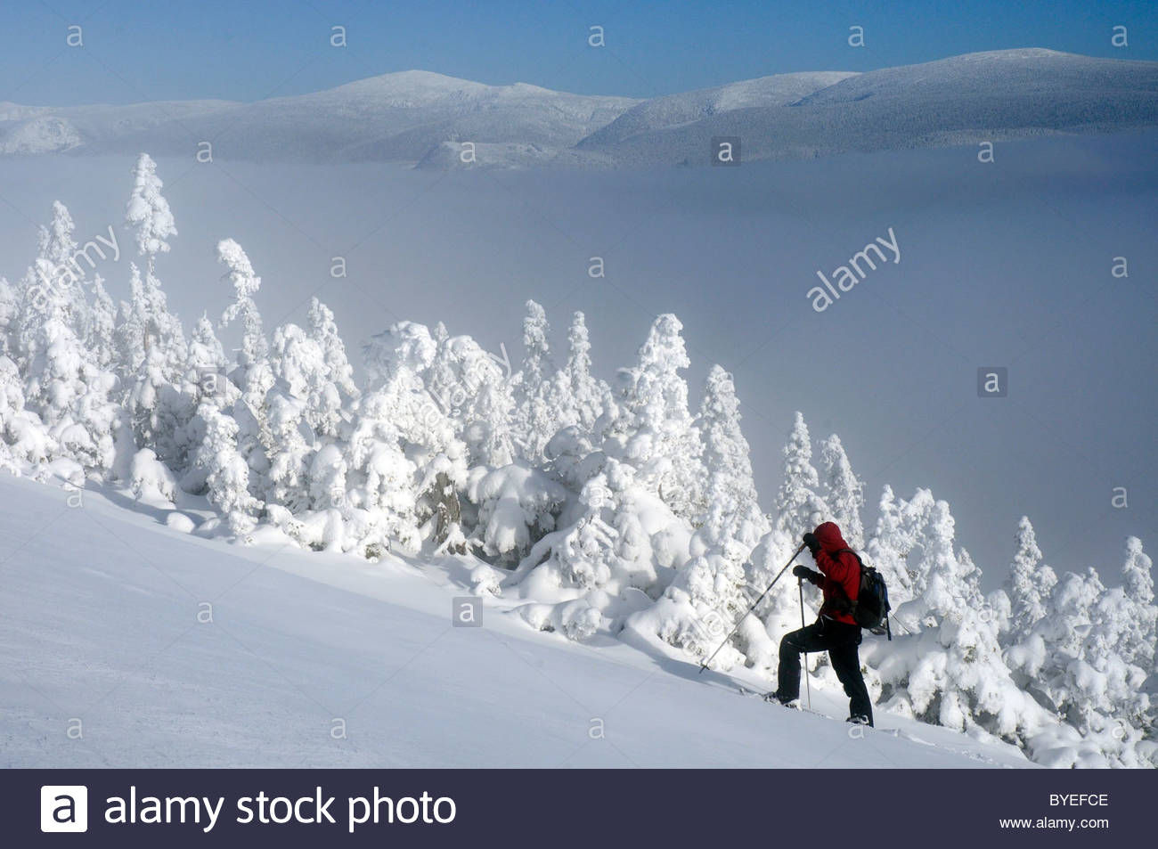 snowshoeing-in-the-chic-chocs-parc-de-la-gaspesie-quebec-canada-in-BYEFCE.jpg