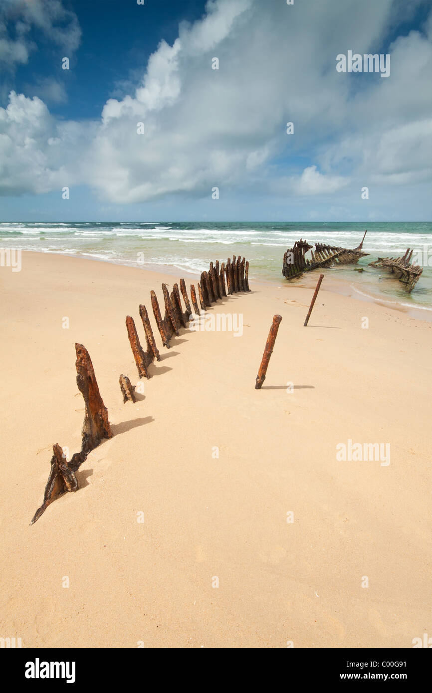 wreck on australian beach during the day  dicky beach  queensland stock photo  royalty free
