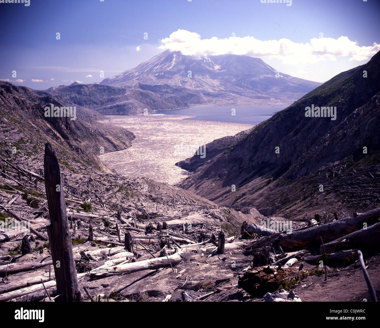 Mount saint helens eruption 1980 before and after