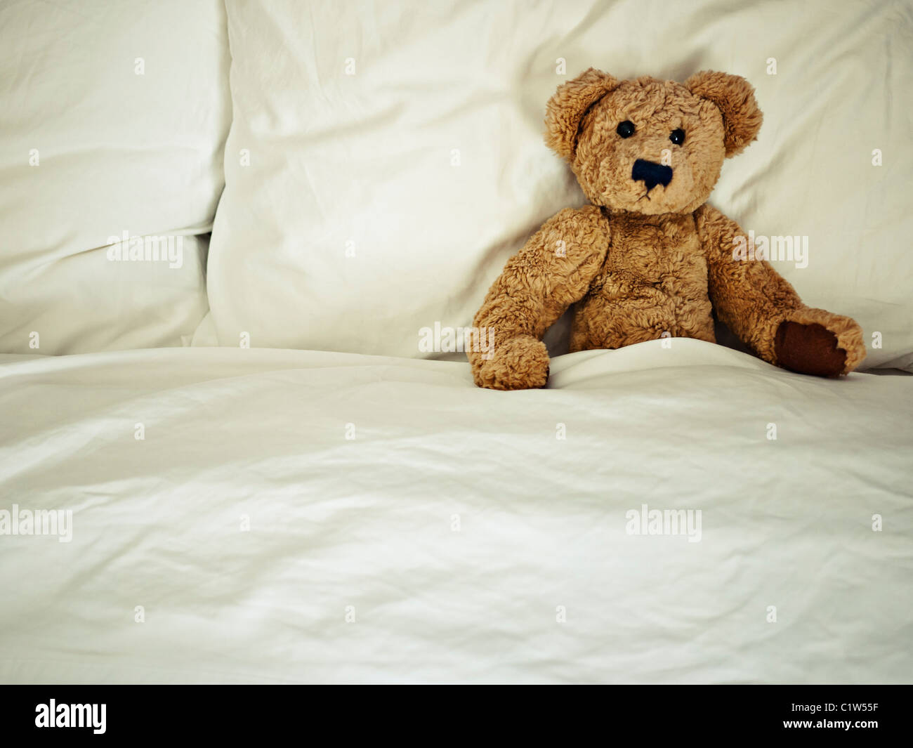Teddy Bear In Bed Stock Photo Royalty Free Image