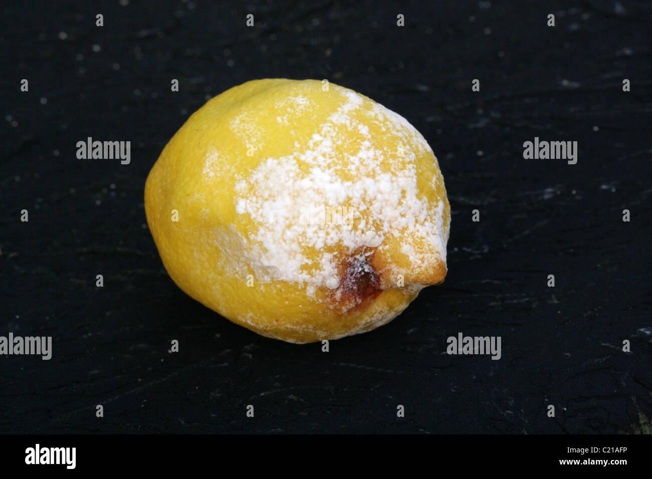 Mold on fruit