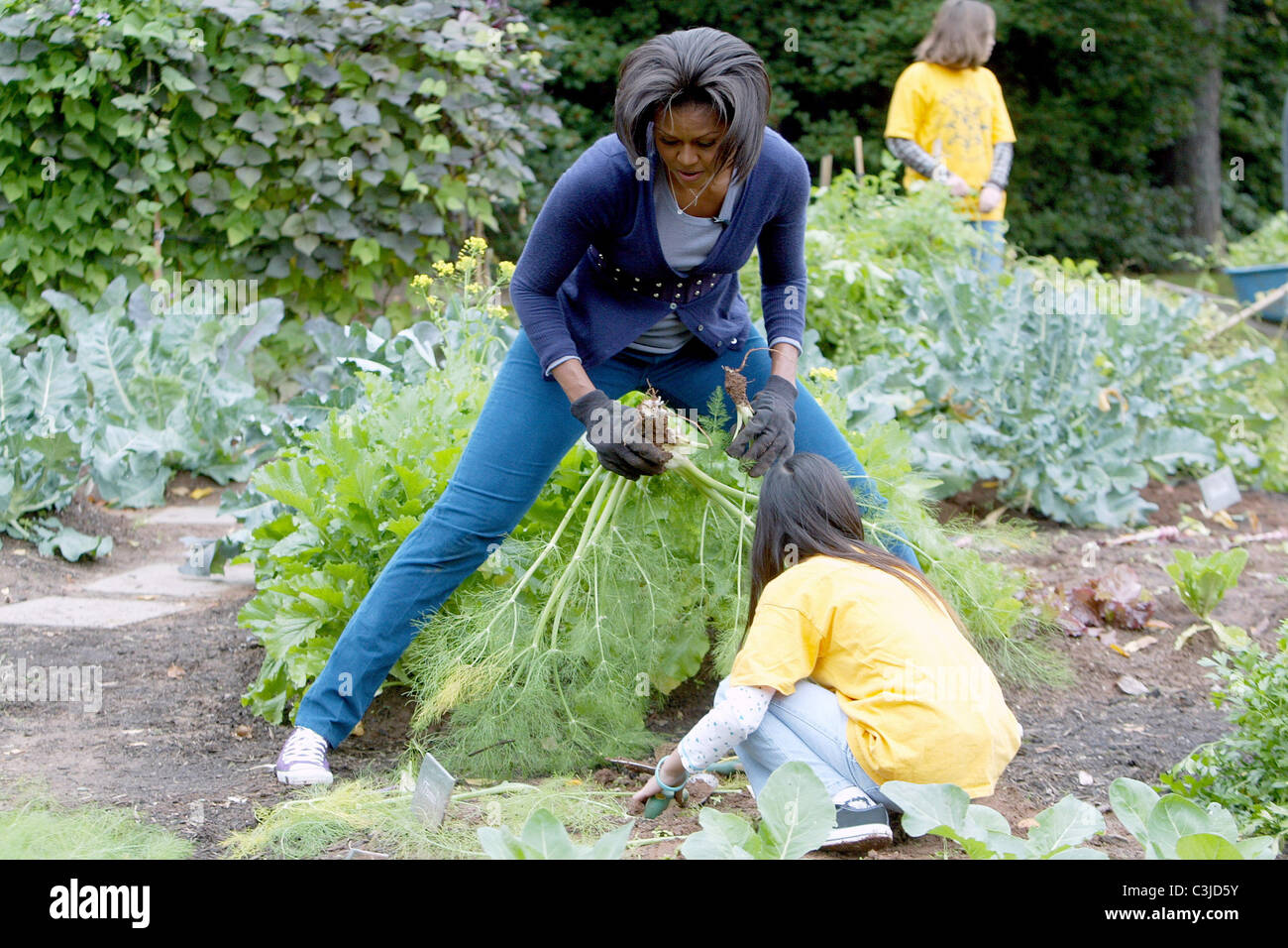 Us First Lady Michelle Obama Hosts A Fall Harvest Of The White House Stock Photo Royalty Free