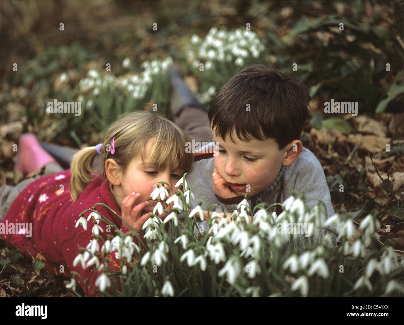 children-looking-at-snowdrops-in-a-wood-