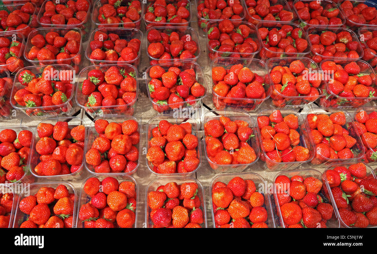 strawberry-punnets-on-market-stall-C5NJ1